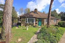3 bedroom Detached Bungalow in Mount Pleasant, Oakham...