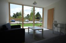 Studio apartment to rent in Anstey Way, Cambridge