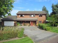 Detached property for sale in Dove Cote...