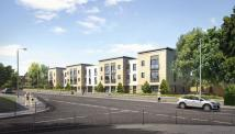 new development for sale in Campsie Grove...