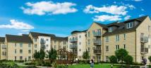 new development for sale in Thackrah Court...