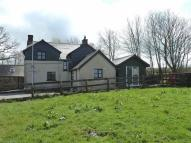 Pyworthy Detached property to rent