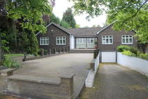 Semi-Detached Bungalow in Hendon Avenue, London, N3