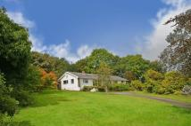 Detached Bungalow for sale in Wellpark Road...