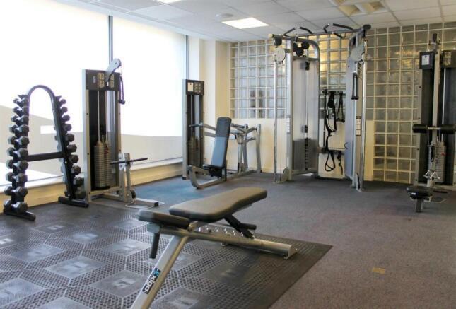 Gym Weights.JPG