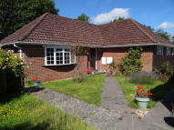 Mountfield Detached Bungalow for sale
