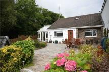 3 bedroom semi detached house for sale in Ger Y Coed, Penybryn...