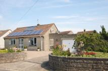 Detached Bungalow for sale in Gassons Lane, Somerton
