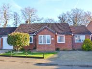 Detached Bungalow in Colin Mclean Road...