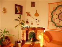 The sitting room fir