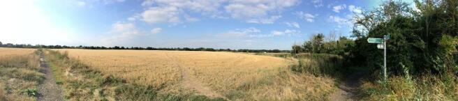 Views over farmland adjoining Sleapshyde