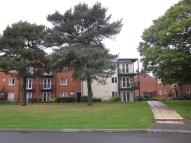 Penthouse to rent in Pine Tree Close...