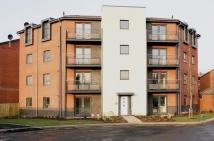 2 bed Apartment in Pear Tree Close...