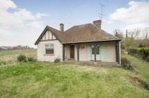 Detached Bungalow in Hazeley Road, Twyford...