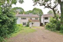 Chaucer Way semi detached house for sale