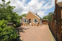 Detached Bungalow for sale in Little Green Lane...