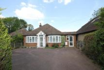 Little Green Lane Detached Bungalow for sale