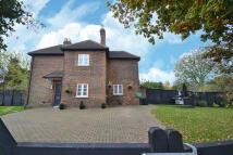 Cottage for sale in Common Lane, Radlett