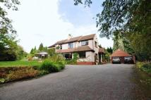 Detached property for sale in Wood Lane, Uttoxeter