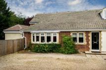 4 bedroom Semi-Detached Bungalow in Foxborough Road, Radley...