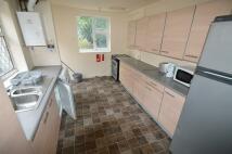 5 bedroom semi detached house in Oak Tree Lane, Selly Oak...
