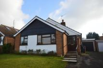 Bungalow to rent in Wentworth Road, Hertford...