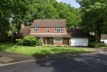 Detached house for sale in Woodland Rise, Studham