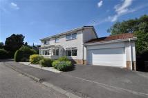 4 bed Detached house to rent in Strathdevon Place, Dollar
