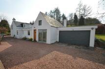 Detached home in Devon Cottage...