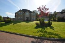 4 bed Detached home for sale in 9 Dollarbeg Park, Dollar...