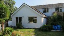 semi detached home to rent in PINE CLOSE, Brixham, TQ5