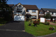 5 bedroom Detached home for sale in Cursons Way, Woodlands