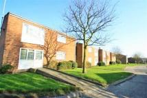 Apartment to rent in Willingham Way...