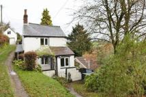 Cottage in The Rocks, Mitcheldean