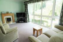 Detached house for sale in RUSPIDGE, NR. CINDERFORD...