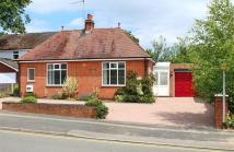 Detached Bungalow in Evesham Road...