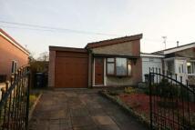Semi-Detached Bungalow to rent in Debenham Crescent...