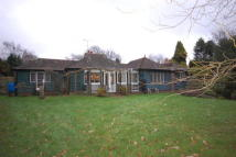 Detached Bungalow in The Drive, TN22