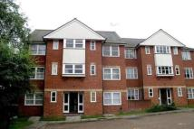 1 bedroom Ground Flat in Rose Hill