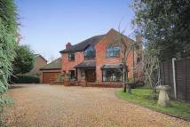 5 bedroom Detached property in Fairyfield Avenue...