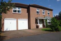 5 bed Detached property in Cameron Lane, Fernwood...