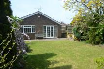 Detached Bungalow to rent in Mill Lane, Impington