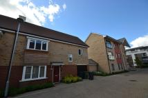 3 bed semi detached home to rent in Foxglove Way, Cambridge...