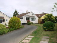 3 bedroom Detached Bungalow to rent in PROUTS WAY, Tregadillett...