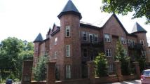 3 bed Apartment in THE PALM Ibbotsons Lane...