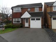 4 bedroom Detached property to rent in Ynys y Coed, Oakdale...