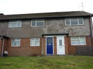 Blodwen Road Flat to rent