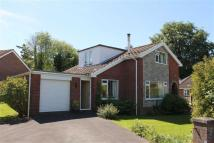 4 bed Detached Bungalow for sale in Alison Drive...