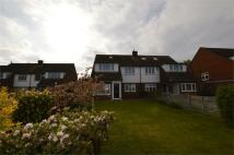 5 bedroom semi detached house in Goffs Crescent...