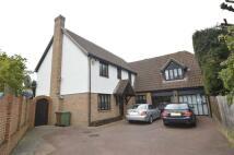 5 bedroom Detached home in White Oak Gardens...
